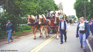Horses in Parade